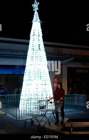 young girl with empty trolleys walking past christmas tree to go late night shopping - Stock Photo