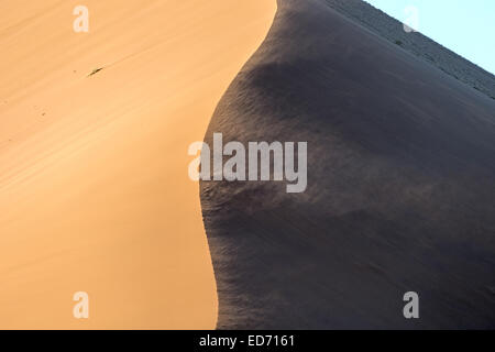 Dune 45 Sossusvlei Namib-Naukluft National Park Namibia - Stock Photo
