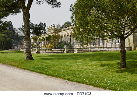 the grade 1 listed building orangery in Margam country park near Port Talbot in south wales - Stock Photo