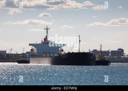 Bulk carrier Mesiter fully loaded with coal from the Hunter Valley coal mines is heading for South Korea Newcastle - Stock Photo