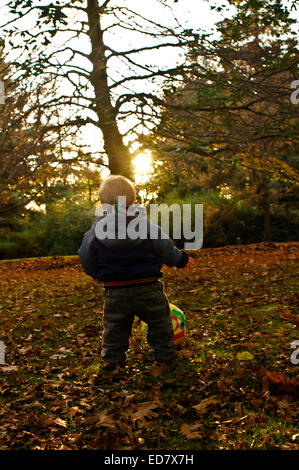 Boy having fun in park with leaves - Stock Photo