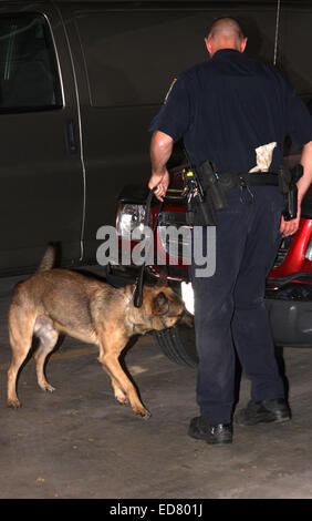 Menomonee Falls Police K-9 searching for drugs on a car in a parking garage - Stock Photo