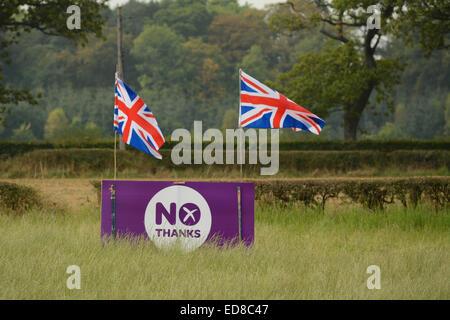 Scottish Independence -  Purple 'No Thanks' Scottish Independence Referendum sign decorated with Union Jack Flags - Stock Photo