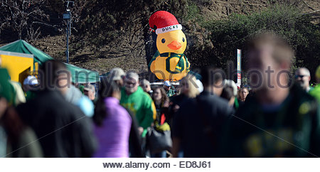 Pasadena, California, USA. 01st Jan, 2015. A giant Duck as fans tailgate prior to the 101st Rose Bowl game in Pasadena, - Stock Photo