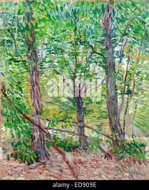 Vincent van Gogh: Trees and Undergrowth. 1887. Oil on canvas. Post-Impressionism. Van Gogh Museum, Amsterdam, Netherlands. - Stock Photo