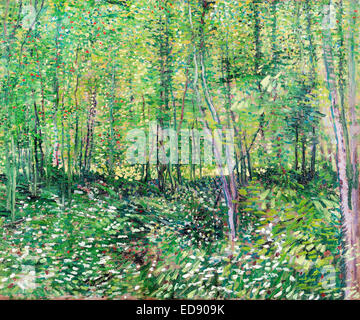 Vincent van Gogh, Trees and Undergrowth 1887 Post-Impressionism. Oil on canvas. Van Gogh Museum, Amsterdam, Netherlands. - Stock Photo
