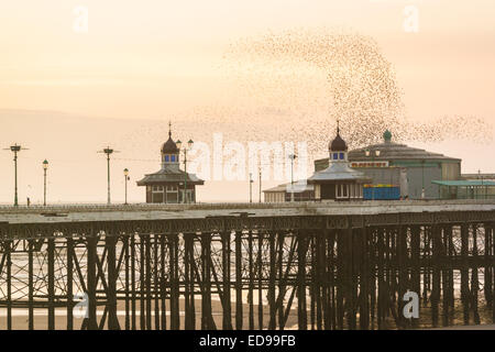Blackpool, UK. 2nd January, 2015.    With the sun setting over Blackpool's north pier tens of thousands of Starling's - Stock Photo