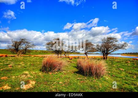 Hury Reservoir sits in Baldersdale in Upper Teesdale County Durham - Stock Photo