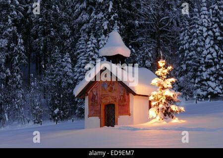 Beleuchteter Christbaum vor einer Kapelle im Winter, Bayern, Oberbayern, Deutschland, Europa  Illuminated Christmas - Stock Photo
