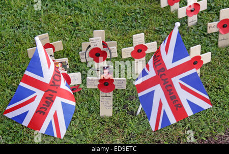Remembrance day Flags / Poppies Warrington Cenotaph Nov 2014, Bridgefoot, Wilderspool Causeway, Cheshire, England, - Stock Photo