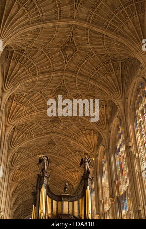 The interior of King's College Chapel, Cambridge, superb example of 15th century late Perpendicular Gothic English - Stock Photo