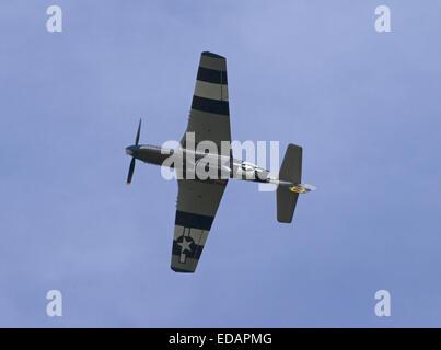 P-51 Mustang - Stock Photo