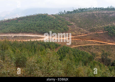 SWAZILAND, AFRICA - Roads through timber industry in Hhohho District - Stock Photo