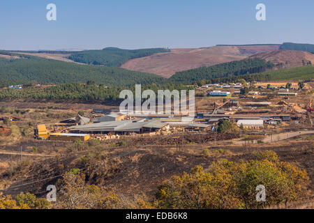 HHOHHO, SWAZILAND, AFRICA - Sawmill and tree plantation clear cutting - Stock Photo