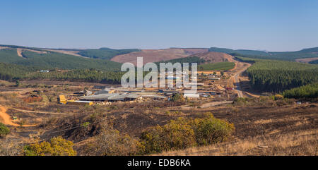 HHOHHO, SWAZILAND, AFRICA - Sawmill and tree plantation monoculture, with clear cutting - Stock Photo
