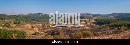 HHOHHO, SWAZILAND, AFRICA - Sawmill and tree plantation, panoramic - Stock Photo