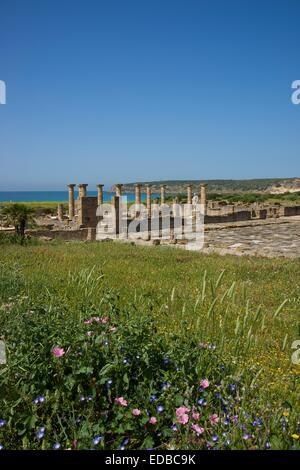 Roman ruins of Baelo Claudia near Bolonia, Costa de la Luz, Andalusia, Spain Stock Photo
