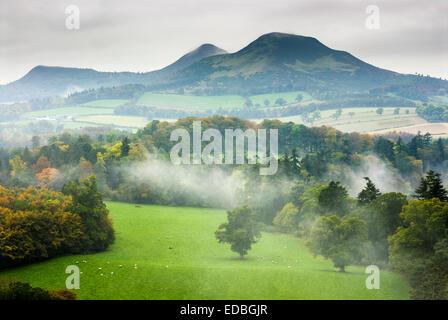 The Eildon Hills, Scottish Borders. - Stock Photo