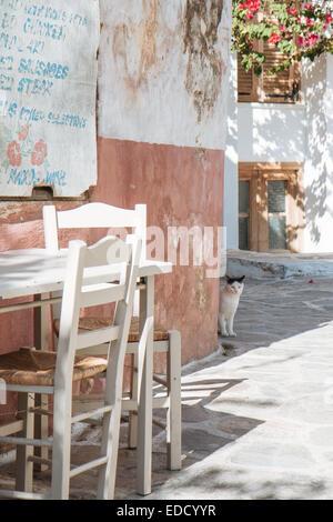 A cat hiding behind a corner in Chalkio, Naxos, Greek Islands. - Stock Photo