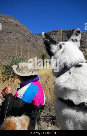 Taking a break along trail in Oliver Lee State Park, New Mexico - USA - Stock Photo