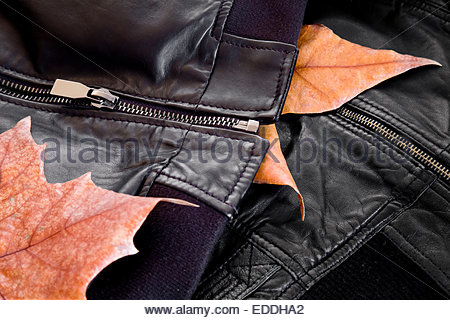 Stitching and zippers in leather jackets - Stock Photo