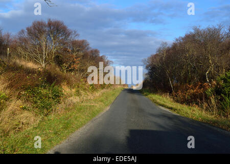 An empty road on Islay in Scotland under a rich blue sky and low, angled, afternoon sun. - Stock Photo