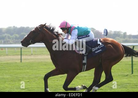 Frankel winning 2000 Guineas at Newmarket, England, 30 April 2011, Tom Queally aboard - Stock Photo