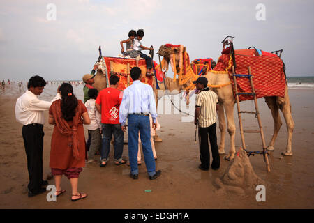 Camel rides on the beach at Puri, Orissa, India - Stock Photo