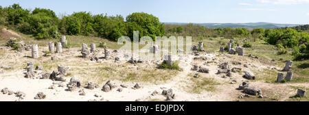 Panorama of Pobiti Kamani (Standing Stones, Stone Forest) Unique Natural Rock Phenomenon. - Stock Photo