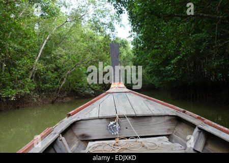 Long-tail boat, Mangrove forest in Krabi, Thailand, Southeast Asia - Stock Photo