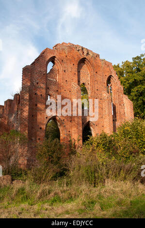 Built in 1230 the Cistercian's monastery Marienpforte was destroyed in the Thirty Years' War. Now it is a ruin near - Stock Photo