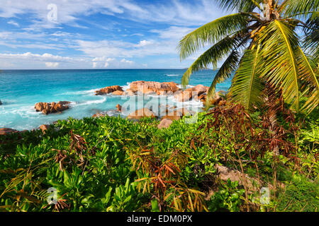 Seychelles, La Digue - Stock Photo