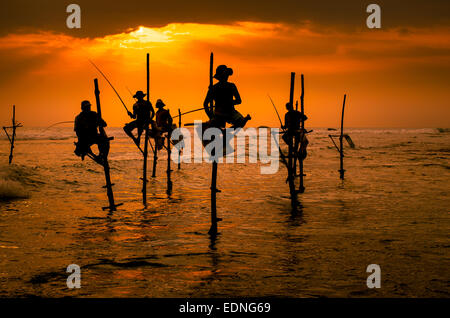 Silhouettes of the traditional fishermen at the sunset in Sri Lanka - Stock Photo