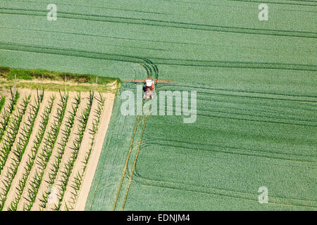 Aerial view, farmer in a tractor spraying a green wheat field, Landshut, Lower Bavaria, Bavaria, Germany - Stock Photo