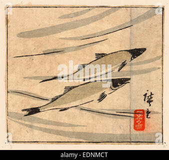 Ayu zu, River trout (Ayu)., Utagawa, Hiroshige, 1842?-1894, artist, [between 1868 and 1894], 1 print : woodcut, - Stock Photo