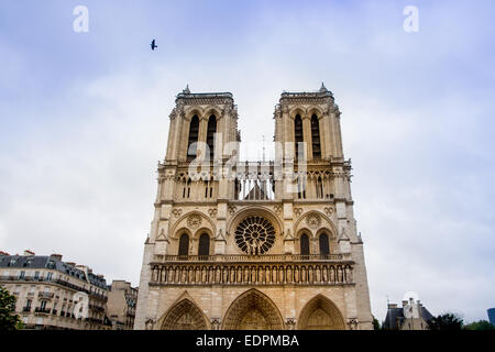 Notre Dame cathedral, Paris - Stock Photo