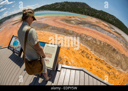 A woman hiking next to the Grand Prismatic Springs,  Yellowstone National Park, Wyoming.