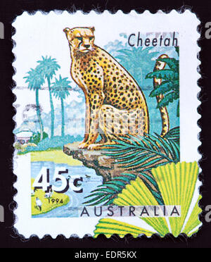 Used and postmarked Australia / Austrailian Stamp 45c 1994 Cheetah - Stock Photo