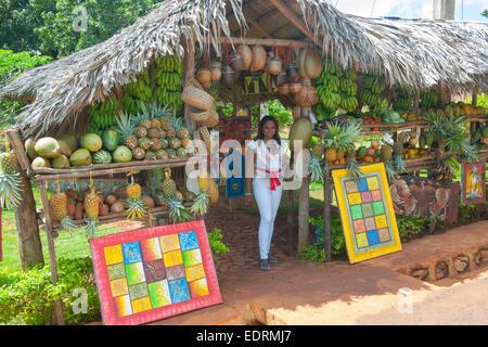 Dominikanische Republik, Halbinsel Samana, Los Galeras, an  der Strasse von Los Galeras zum Dorf Rincon - Stock Photo