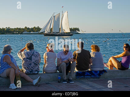 Tourists in Key West's Mallory Square watching schooner on sunset cruise. - Stock Photo