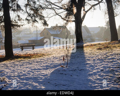 Low yellow winter sun over field of snow and stubbles, dry grass and scattered trees, long shadows, wooden houses - Stock Photo