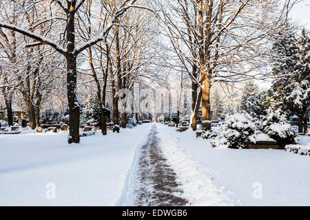 Cemetery of the Protestant Sophien Parish & snow-covered trees after winter snow, Friedhof der Sophien Gemeinde, - Stock Photo