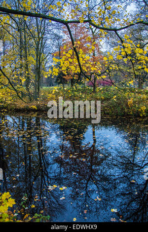 Autumn, during rainy weather. Leaves on the water surface of a pond in which the bare trees on the banks, are reflected - Stock Photo