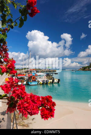 Seychelles, La Digue. Boats in harbor. - Stock Photo