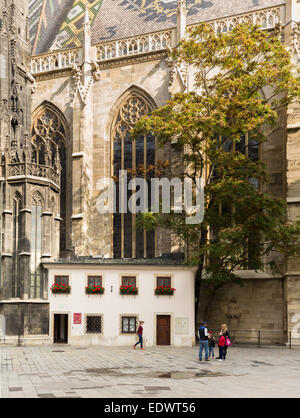 Side view of St Stephens Cathedral with small home and tree in old town Vienna, Austria - Stock Photo