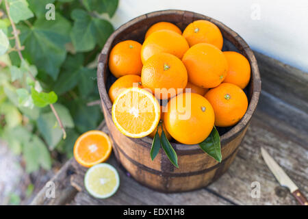 bucket of oranges on an old wooden bench against ivy covered white wall - Stock Photo