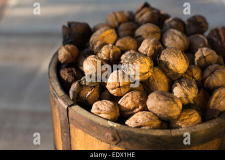 close up of vintage bucket filled with freshly harvested Spanish walnuts against a moody dark background - Stock Photo