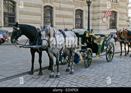 Traditional horse drawn carriages in Vienna, just waiting for customers. - Stock Photo