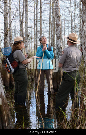 US Interior Secretary Sally Jewell stops to view the mangrove swamps and wetlands restoration efforts during a visit - Stock Photo
