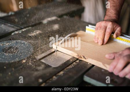 Carpenter working on the circular saw